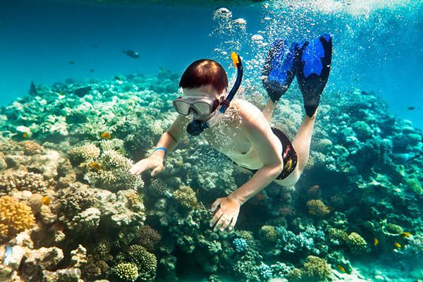 Lặn ngắm san hô Phú Quốc