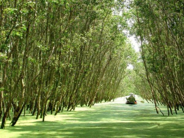 khu bảo tồn Lung Ngọc Hoàng