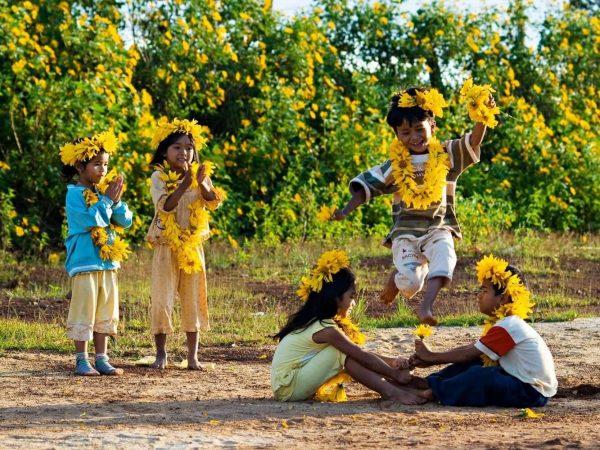 Mùa hoa dã ở Tây Nguyên